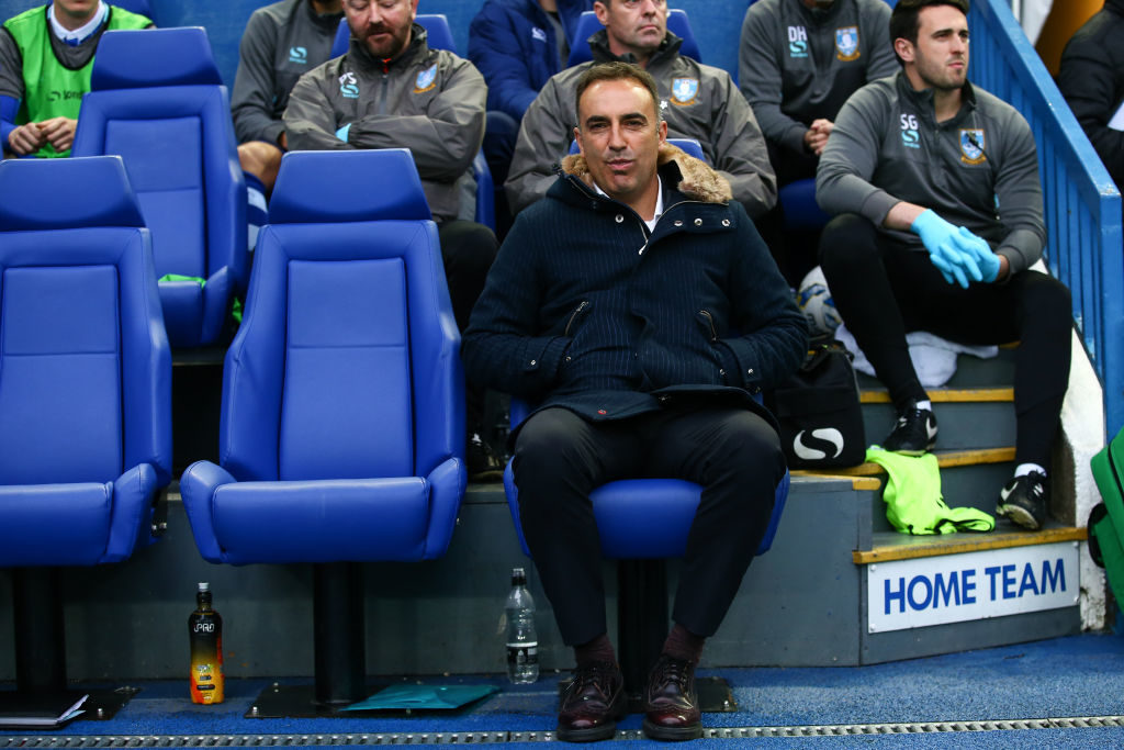 Carlos Carvalhal manager.
